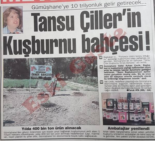 Tansu Çiller'in kuşburnu bahçesi!