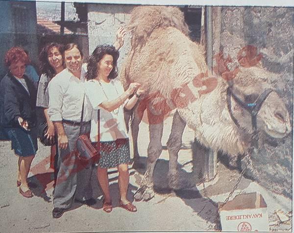 Özal'ın devesi kısmet kapısı