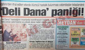 Deli Dana Hastalığı