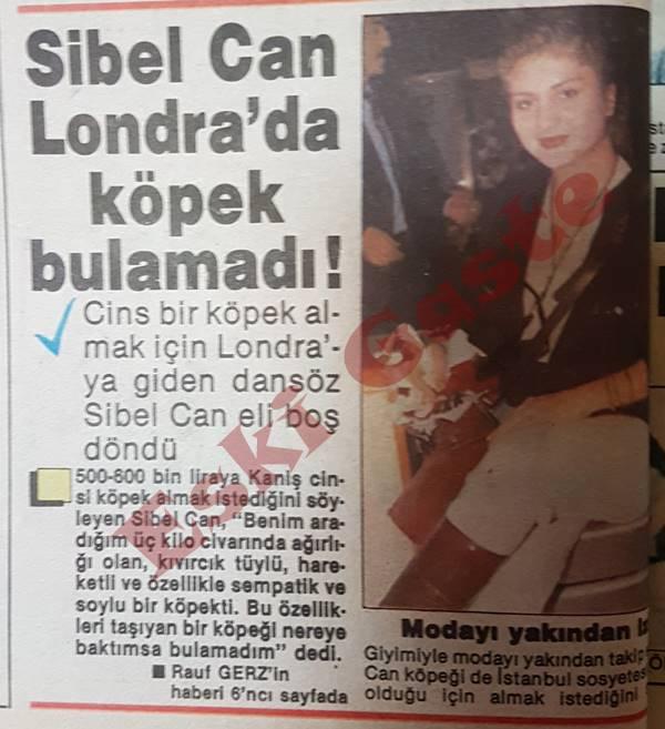 Sibel Can Londra'da köpek bulamadı